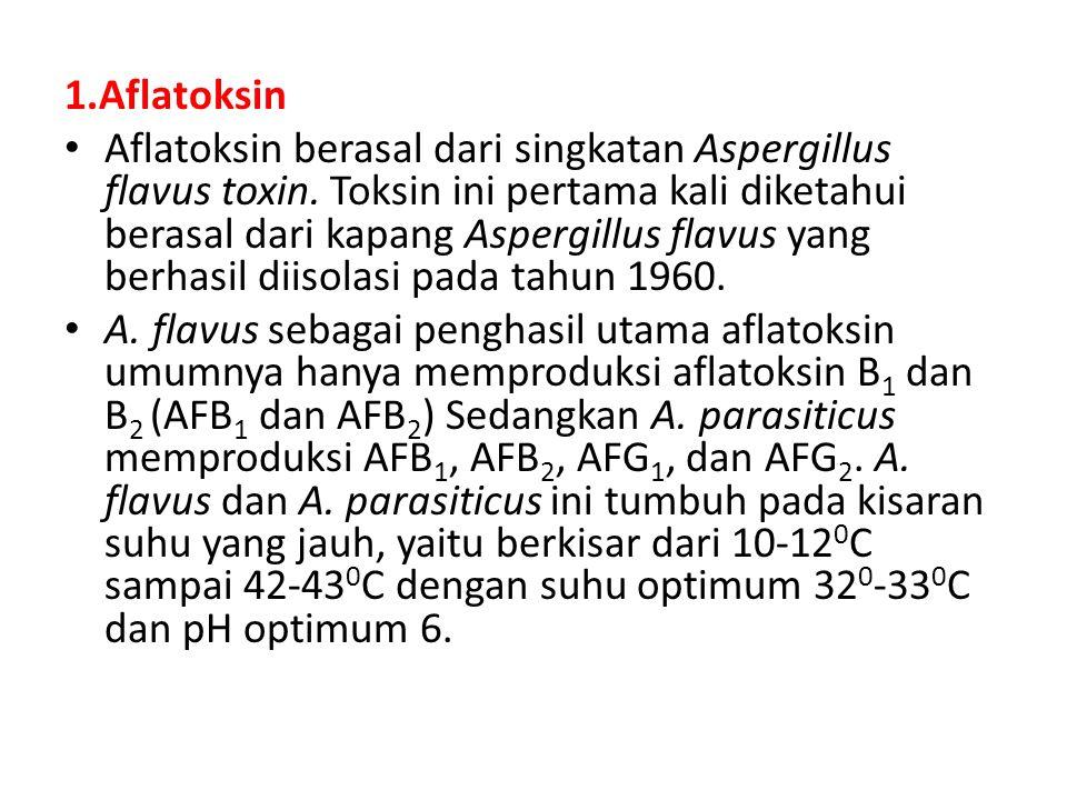 1.Aflatoksin Aflatoksin berasal dari singkatan Aspergillus flavus toxin. Toksin ini pertama kali diketahui berasal dari kapang Aspergillus flavus yang
