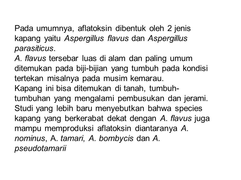 Pada umumnya, aflatoksin dibentuk oleh 2 jenis kapang yaitu Aspergillus flavus dan Aspergillus parasiticus. A. flavus tersebar luas di alam dan paling