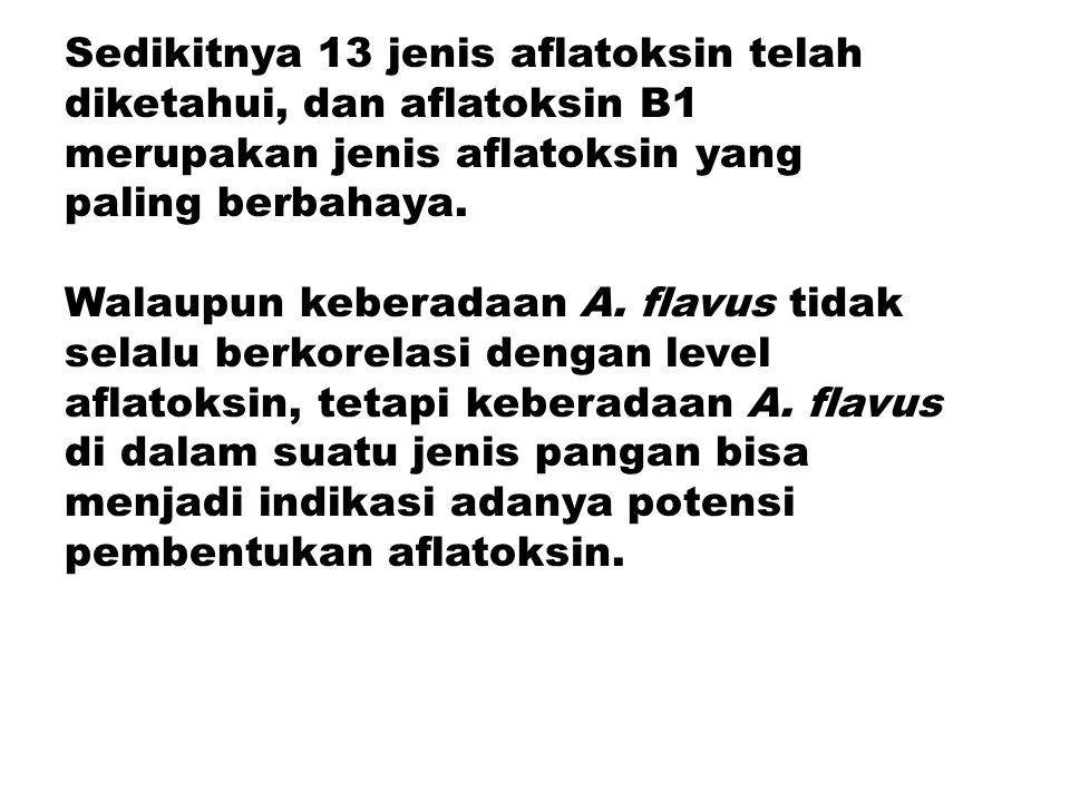Sedikitnya 13 jenis aflatoksin telah diketahui, dan aflatoksin B1 merupakan jenis aflatoksin yang paling berbahaya. Walaupun keberadaan A. flavus tida