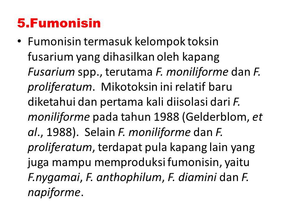 5.Fumonisin Fumonisin termasuk kelompok toksin fusarium yang dihasilkan oleh kapang Fusarium spp., terutama F. moniliforme dan F. proliferatum. Mikoto