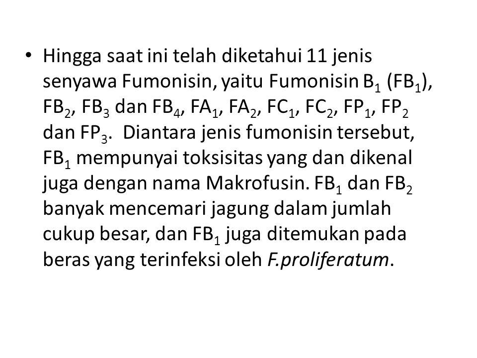 Hingga saat ini telah diketahui 11 jenis senyawa Fumonisin, yaitu Fumonisin B 1 (FB 1 ), FB 2, FB 3 dan FB 4, FA 1, FA 2, FC 1, FC 2, FP 1, FP 2 dan F