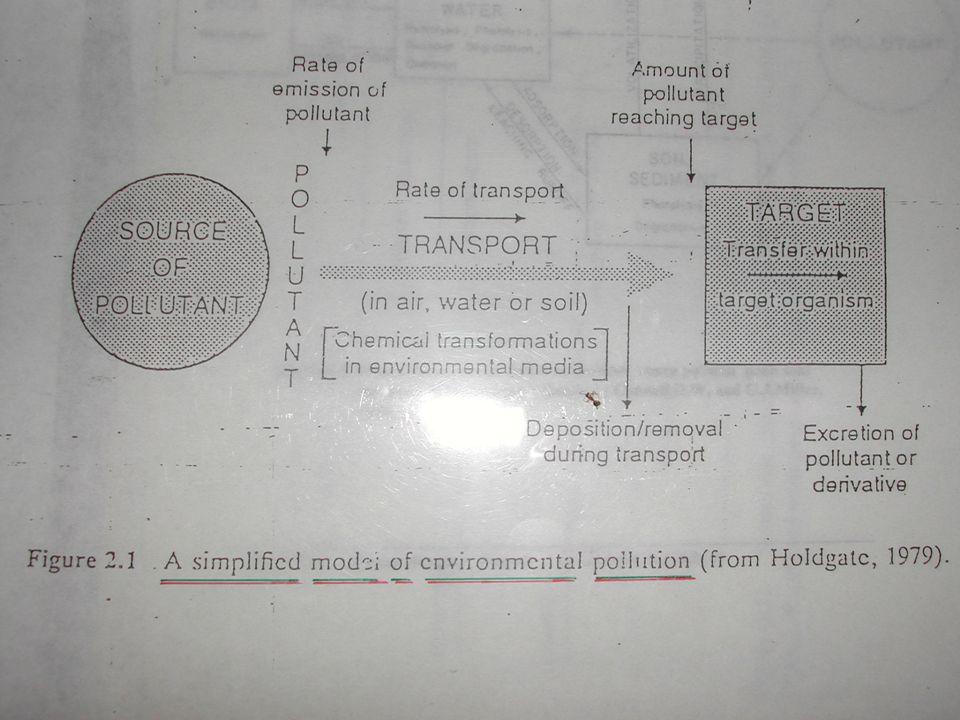 BIOTRANSFORMASI Tujuan utama : detoksifikasi Lipofil hidrofil (polar) ekskresi Reaksi enzimatik : enzim, ko enzim Di semua sel, terutama sel hati Hasil : metabolit Bioaktivasi metabolit yang lebih aktif Bioinaktivasi metabolit kurang aktif Reaksi fase I : degradasi (oksidasi, reduksi, hidrolisis) Reaksi fase II : konjugasipolar