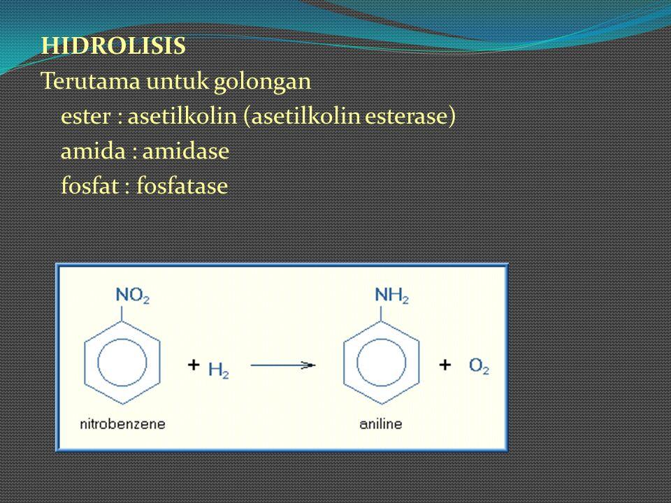 HIDROLISIS Terutama untuk golongan ester : asetilkolin (asetilkolin esterase) amida : amidase fosfat : fosfatase