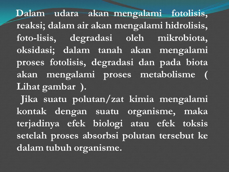 Dalam udara akan mengalami fotolisis, reaksi; dalam air akan mengalami hidrolisis, foto-lisis, degradasi oleh mikrobiota, oksidasi; dalam tanah akan m