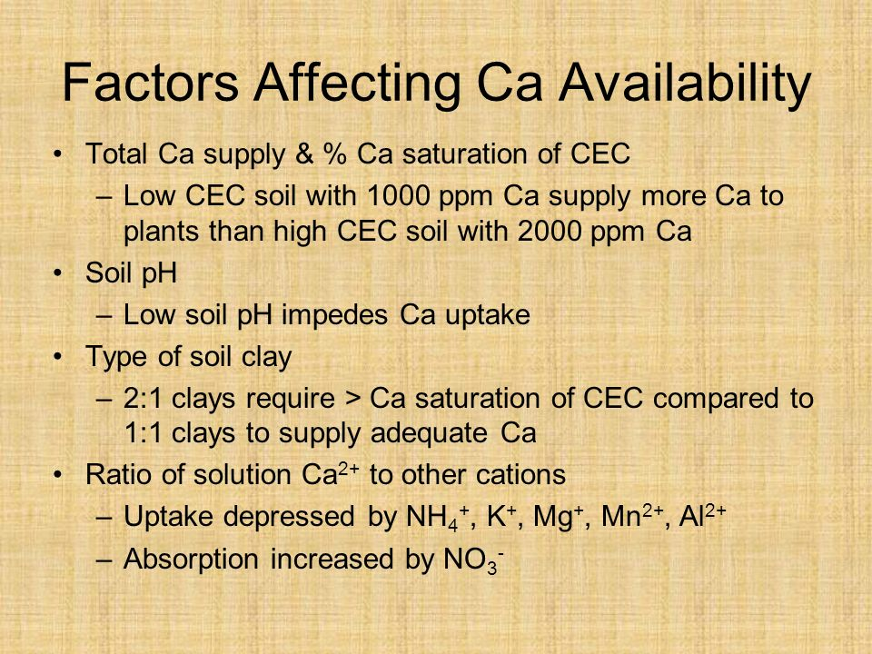 Factors Affecting Ca Availability Total Ca supply & % Ca saturation of CEC –Low CEC soil with 1000 ppm Ca supply more Ca to plants than high CEC soil with 2000 ppm Ca Soil pH –Low soil pH impedes Ca uptake Type of soil clay –2:1 clays require > Ca saturation of CEC compared to 1:1 clays to supply adequate Ca Ratio of solution Ca 2+ to other cations –Uptake depressed by NH 4 +, K +, Mg +, Mn 2+, Al 2+ –Absorption increased by NO 3 -
