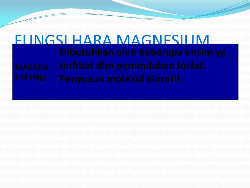 FUNGSI HARA MAGNESIUM MAGNESI- UM (Mg) Dibutuhkan oleh beberapa ensim yg terlibat dlm pemindahan fosfat. Penyusun molekul klorofil.
