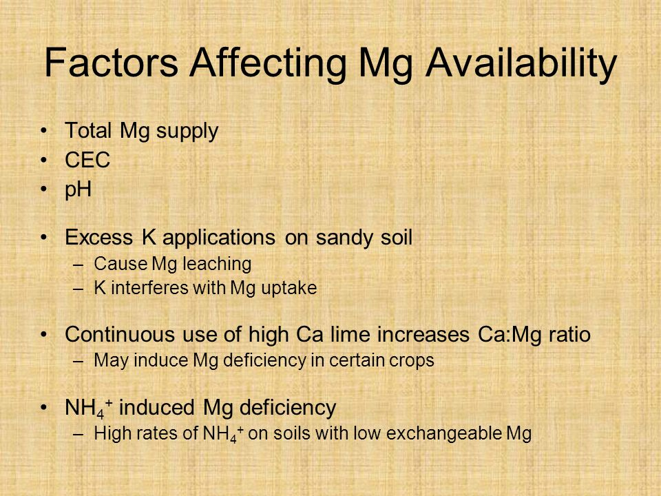 Factors Affecting Mg Availability Total Mg supply CEC pH Excess K applications on sandy soil –Cause Mg leaching –K interferes with Mg uptake Continuous use of high Ca lime increases Ca:Mg ratio –May induce Mg deficiency in certain crops NH 4 + induced Mg deficiency –High rates of NH 4 + on soils with low exchangeable Mg