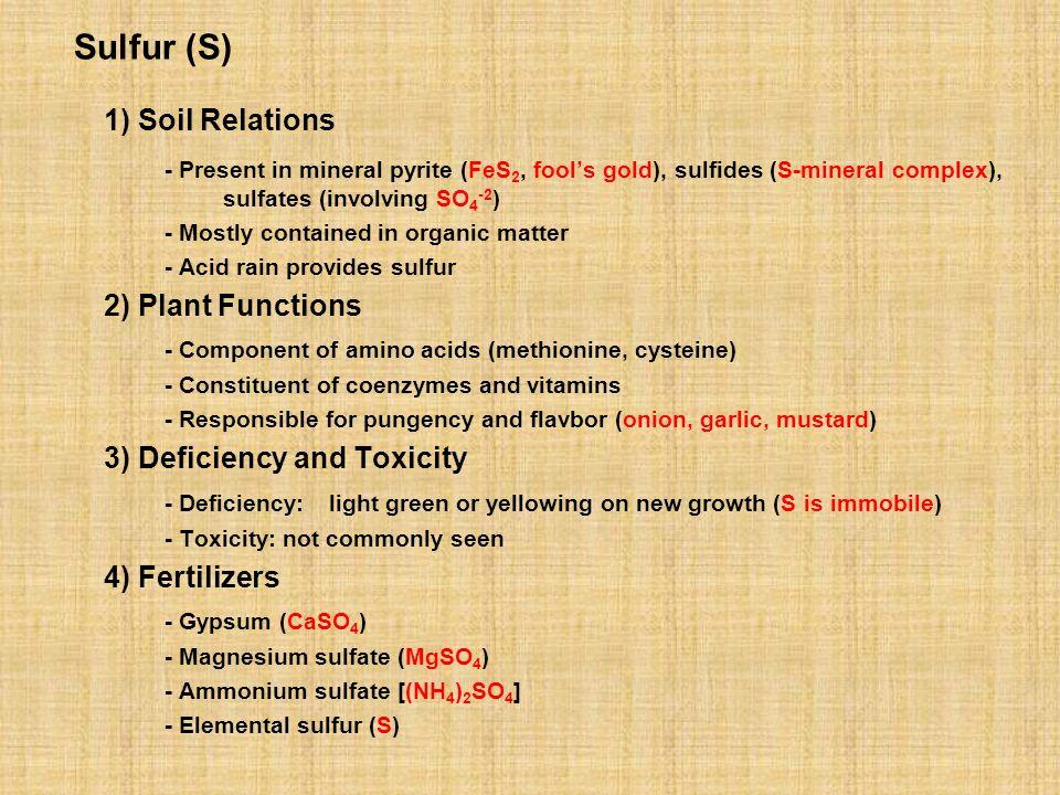 Sulfur (S) 1) Soil Relations - Present in mineral pyrite (FeS 2, fools gold), sulfides (S-mineral complex), sulfates (involving SO 4 -2 ) - Mostly con