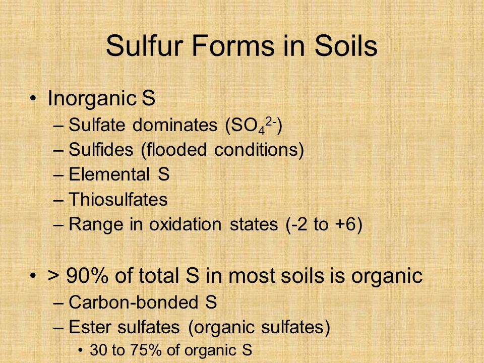 Sulfur Forms in Soils Inorganic S –Sulfate dominates (SO 4 2- ) –Sulfides (flooded conditions) –Elemental S –Thiosulfates –Range in oxidation states (-2 to +6) > 90% of total S in most soils is organic –Carbon-bonded S –Ester sulfates (organic sulfates) 30 to 75% of organic S