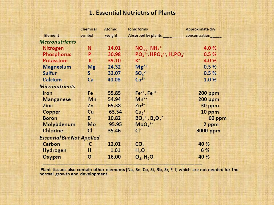 MACRONUTRIENTS – SECONDARY ElementMain FunctionPrimary Source Approx.