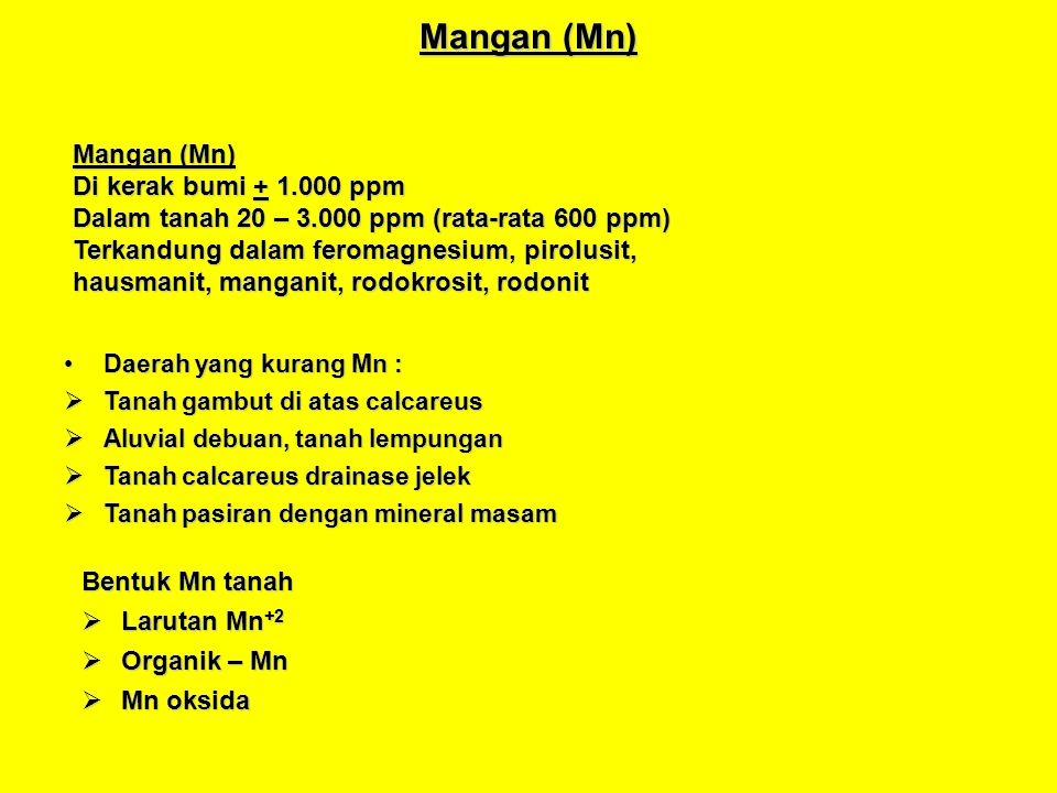 Mangan (Mn) Daerah yang kurang Mn :Daerah yang kurang Mn : Tanah gambut di atas calcareus Tanah gambut di atas calcareus Aluvial debuan, tanah lempung
