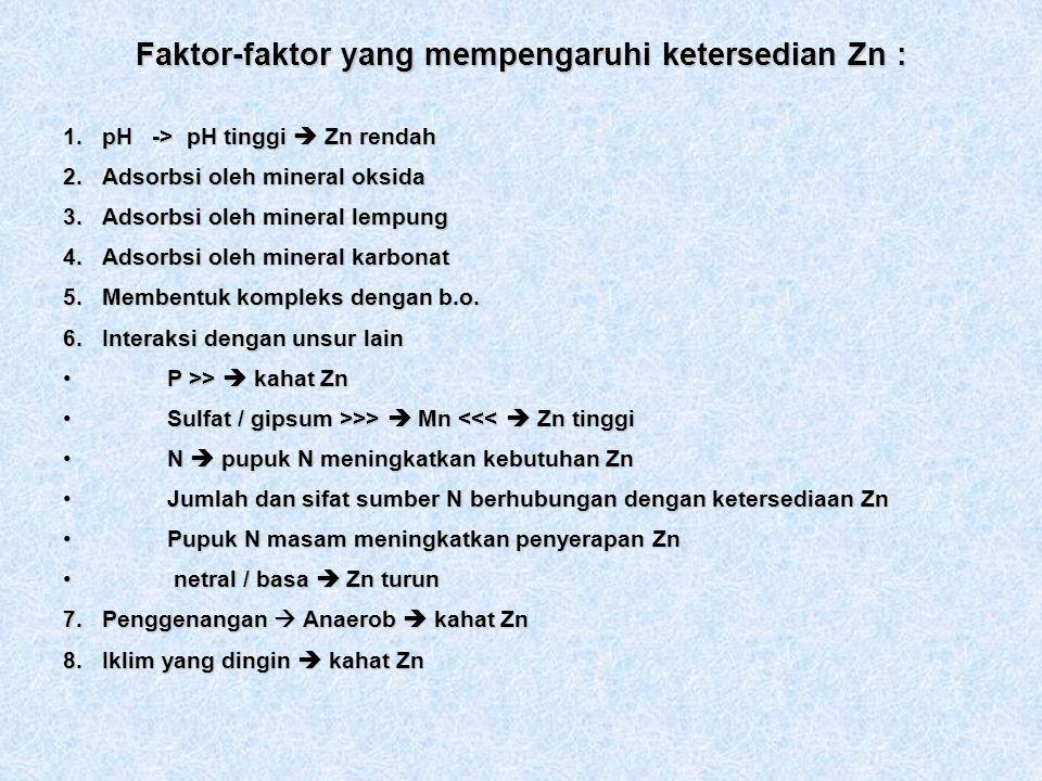 Faktor-faktor yang mempengaruhi ketersedian Zn : 1.pH -> pH tinggi Zn rendah 2.Adsorbsi oleh mineral oksida 3.Adsorbsi oleh mineral lempung 4.Adsorbsi