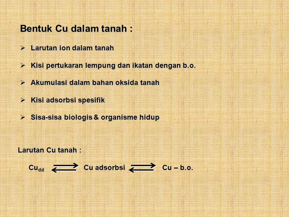 Bentuk Cu dalam tanah : Larutan ion dalam tanah Larutan ion dalam tanah Kisi pertukaran lempung dan ikatan dengan b.o. Kisi pertukaran lempung dan ika
