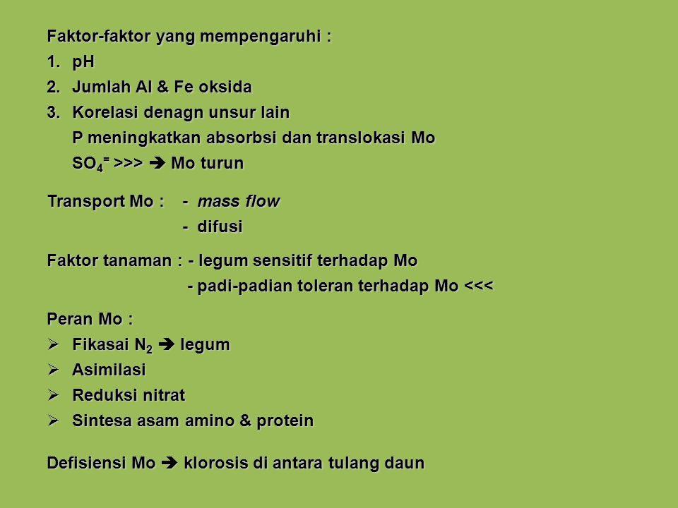 Faktor-faktor yang mempengaruhi : 1.pH 2.Jumlah Al & Fe oksida 3.Korelasi denagn unsur lain P meningkatkan absorbsi dan translokasi Mo SO 4 = >>> Mo turun Transport Mo :- mass flow - difusi Faktor tanaman : - legum sensitif terhadap Mo - padi-padian toleran terhadap Mo <<< - padi-padian toleran terhadap Mo <<< Peran Mo : Fikasai N 2 legum Fikasai N 2 legum Asimilasi Asimilasi Reduksi nitrat Reduksi nitrat Sintesa asam amino & protein Sintesa asam amino & protein Defisiensi Mo klorosis di antara tulang daun