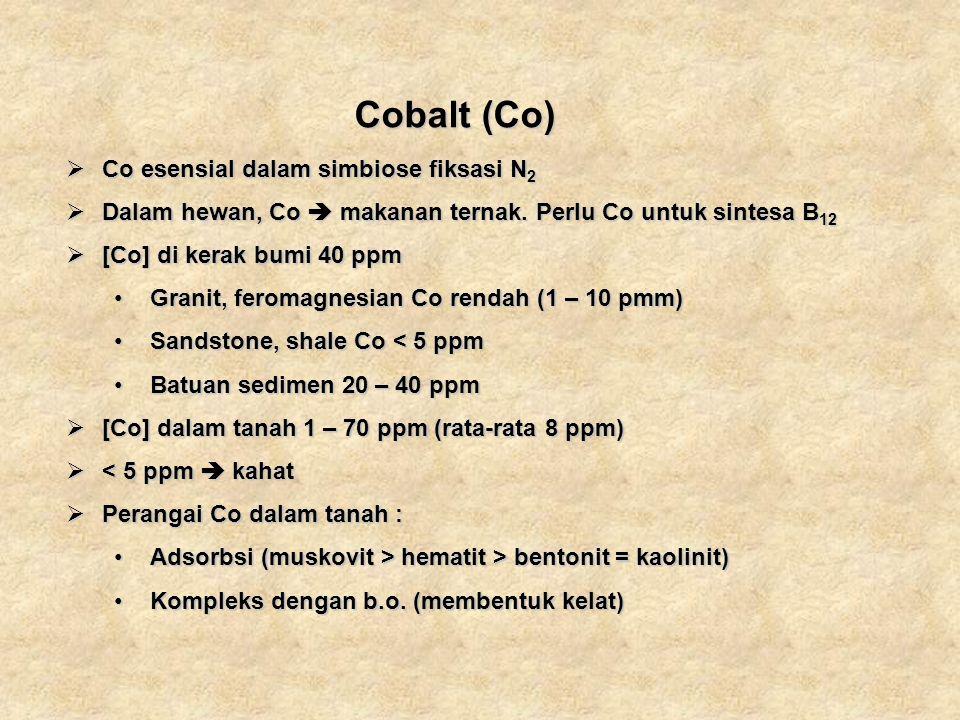 Cobalt (Co) Cobalt (Co) Co esensial dalam simbiose fiksasi N 2 Co esensial dalam simbiose fiksasi N 2 Dalam hewan, Co makanan ternak. Perlu Co untuk s