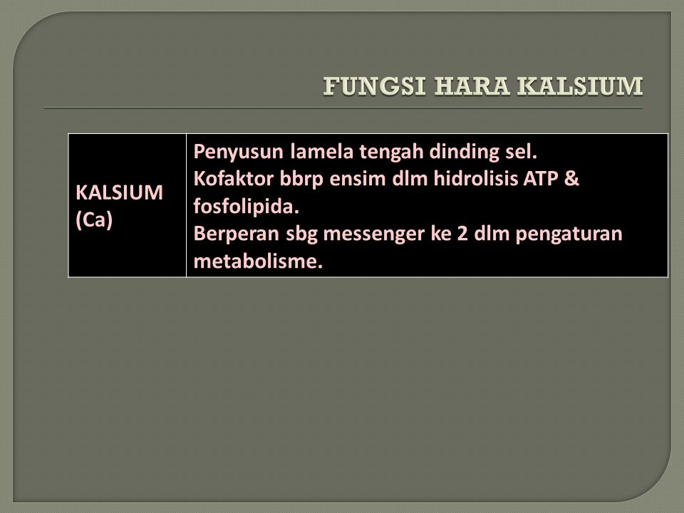 Sulfur (S) –Plant available form: SO 4 - –Plant immobile, very soil mobile –Functions: structural compound of AAs, etc.