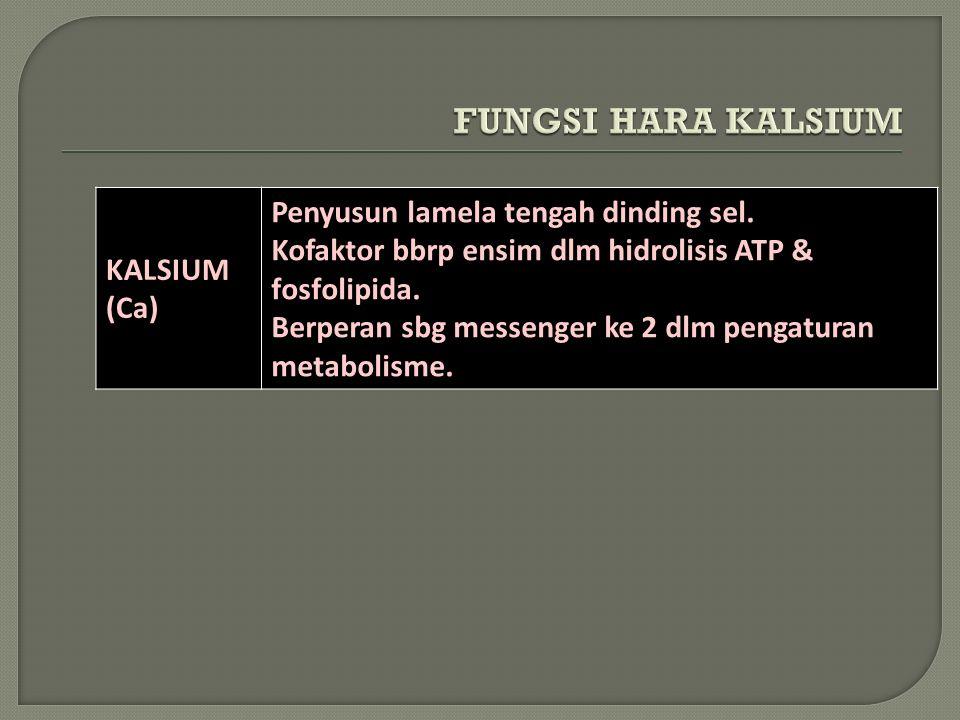 KALSIUM (Ca) Penyusun lamela tengah dinding sel. Kofaktor bbrp ensim dlm hidrolisis ATP & fosfolipida. Berperan sbg messenger ke 2 dlm pengaturan meta