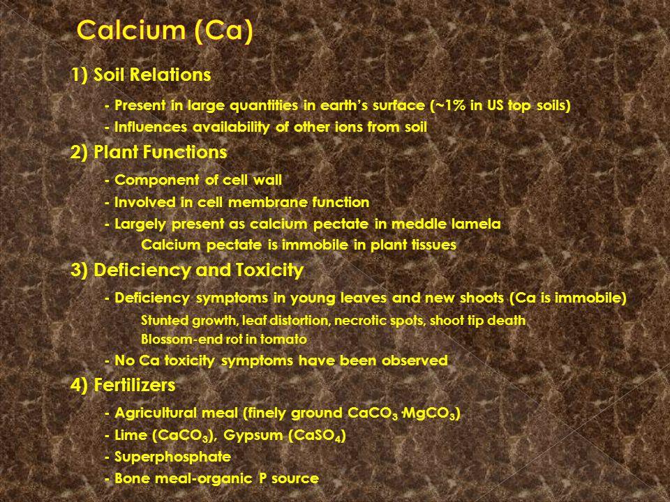 Faktor-faktor yang mempengaruhi ketersedian Zn : 1.pH -> pH tinggi Zn rendah 2.Adsorbsi oleh mineral oksida 3.Adsorbsi oleh mineral lempung 4.Adsorbsi oleh mineral karbonat 5.Membentuk kompleks dengan b.o.