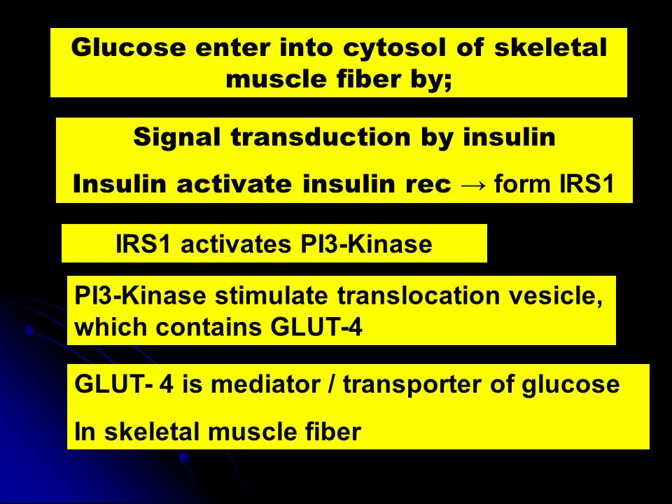 Glucose enter into cytosol of skeletal muscle fiber by; Signal transduction by insulin Insulin activate insulin rec form IRS1 IRS1 activates PI3-Kinas