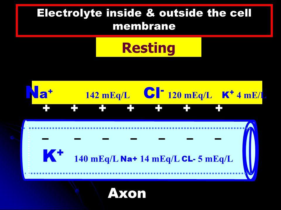 Axon ++++++ + – – – – – – – K + 140 mEq/L Na+ 14 mEq/L CL- 5 mEq/L N a + 142 mEq/L Cl - 120 mEq/L K + 4 mE/L Electrolyte inside & outside the cell mem