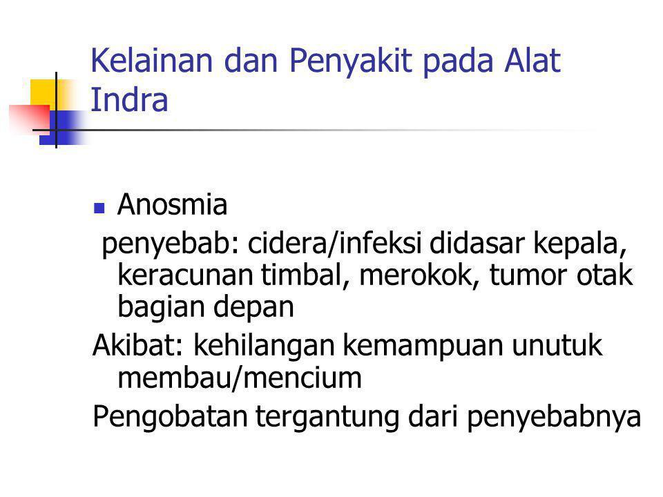Kelainan dan Penyakit pada Alat Indra Anosmia penyebab: cidera/infeksi didasar kepala, keracunan timbal, merokok, tumor otak bagian depan Akibat: kehi