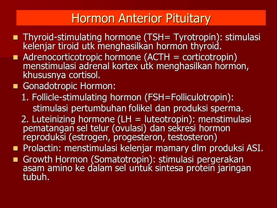 Hormon Anterior Pituitary Thyroid-stimulating hormone (TSH= Tyrotropin): stimulasi kelenjar tiroid utk menghasilkan hormon thyroid. Thyroid-stimulatin