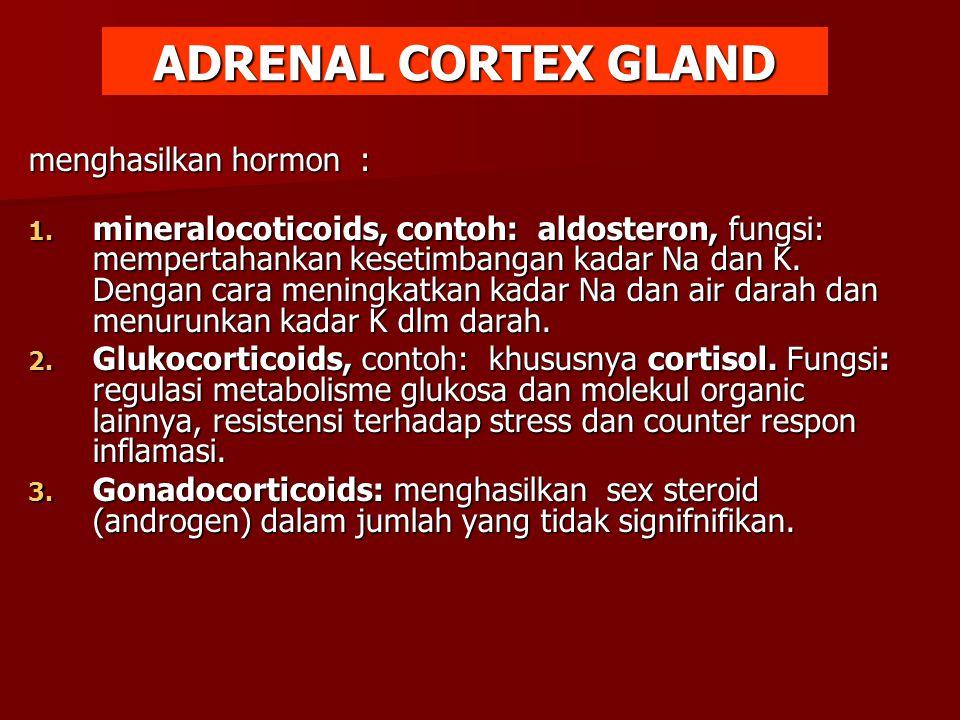 menghasilkan hormon : 1. mineralocoticoids, contoh: aldosteron, fungsi: mempertahankan kesetimbangan kadar Na dan K. Dengan cara meningkatkan kadar Na