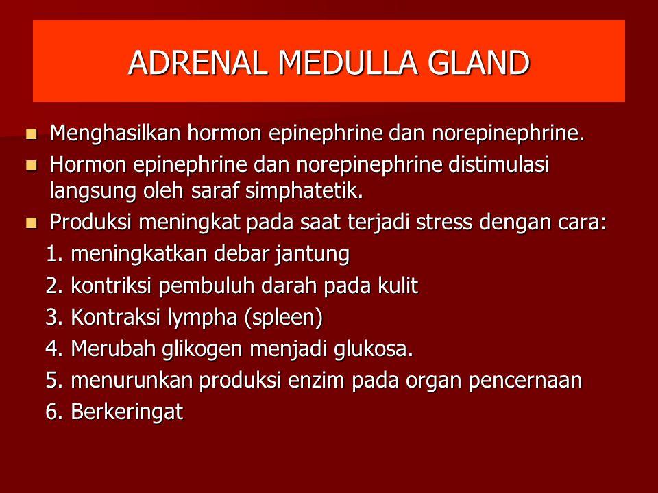 ADRENAL MEDULLA GLAND Menghasilkan hormon epinephrine dan norepinephrine. Menghasilkan hormon epinephrine dan norepinephrine. Hormon epinephrine dan n