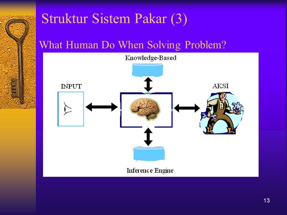 What Human Do When Solving Problem? 13 Struktur Sistem Pakar (3)
