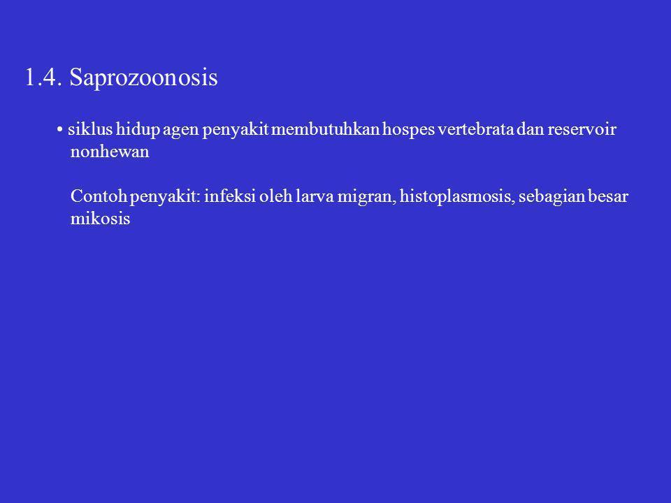 1.4. Saprozoonosis siklus hidup agen penyakit membutuhkan hospes vertebrata dan reservoir nonhewan Contoh penyakit: infeksi oleh larva migran, histopl