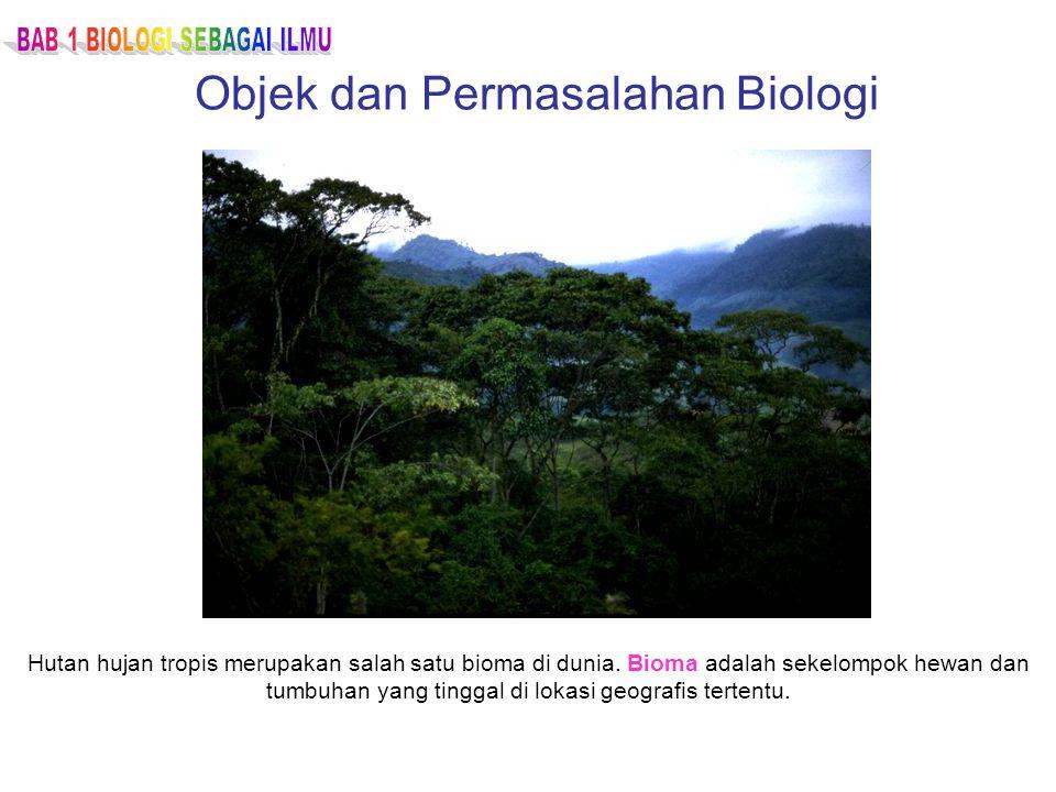Objek dan Permasalahan Biologi Hutan hujan tropis merupakan salah satu bioma di dunia. Bioma adalah sekelompok hewan dan tumbuhan yang tinggal di loka