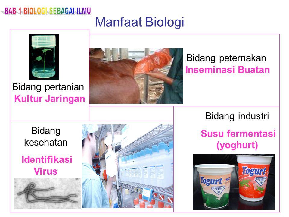 Manfaat Biologi Bidang pertanian Kultur Jaringan Bidang peternakan Inseminasi Buatan Bidang kesehatan Identifikasi Virus Bidang industri Susu fermenta