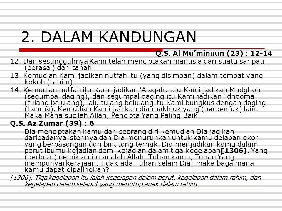 2. DALAM KANDUNGAN Q.S. Al Mu'minuun (23) : 12-14 12. Dan sesungguhnya Kami telah menciptakan manusia dari suatu saripati (berasal) dari tanah 13. Kem