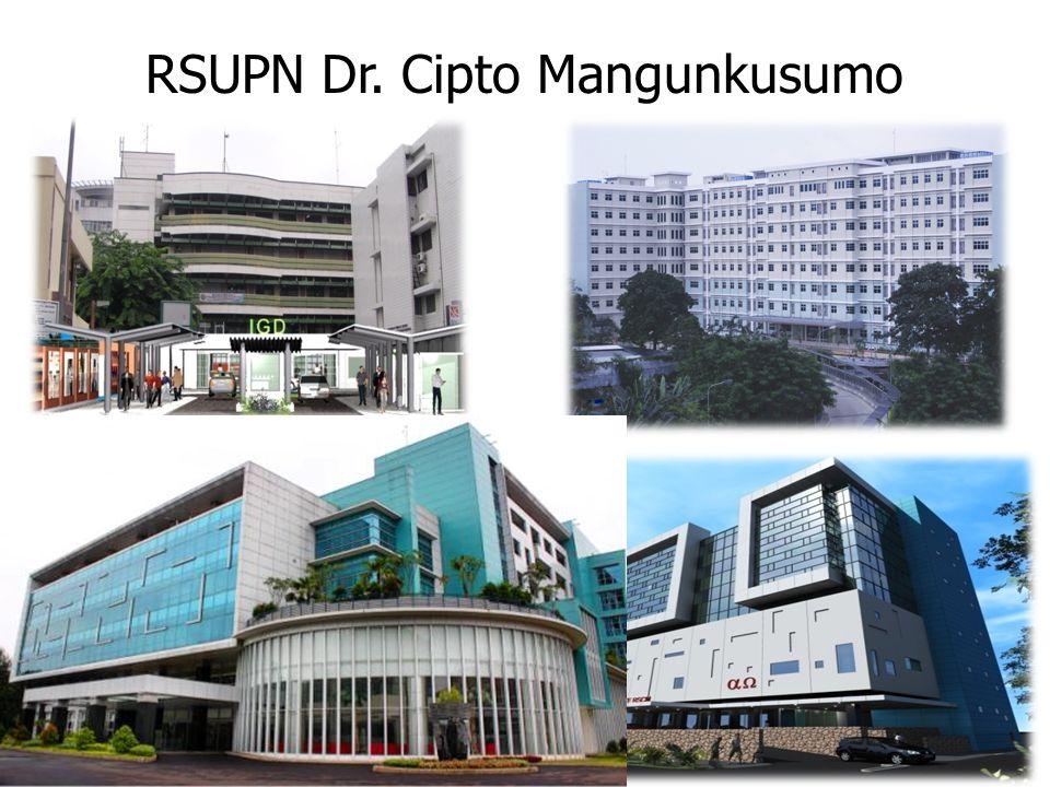 Pelayanan Kesehatan RS milik Pemerintah RS rujukan nasional RS pendidikan RS terbesar