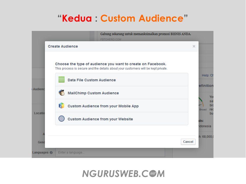 Kedua : Custom Audience
