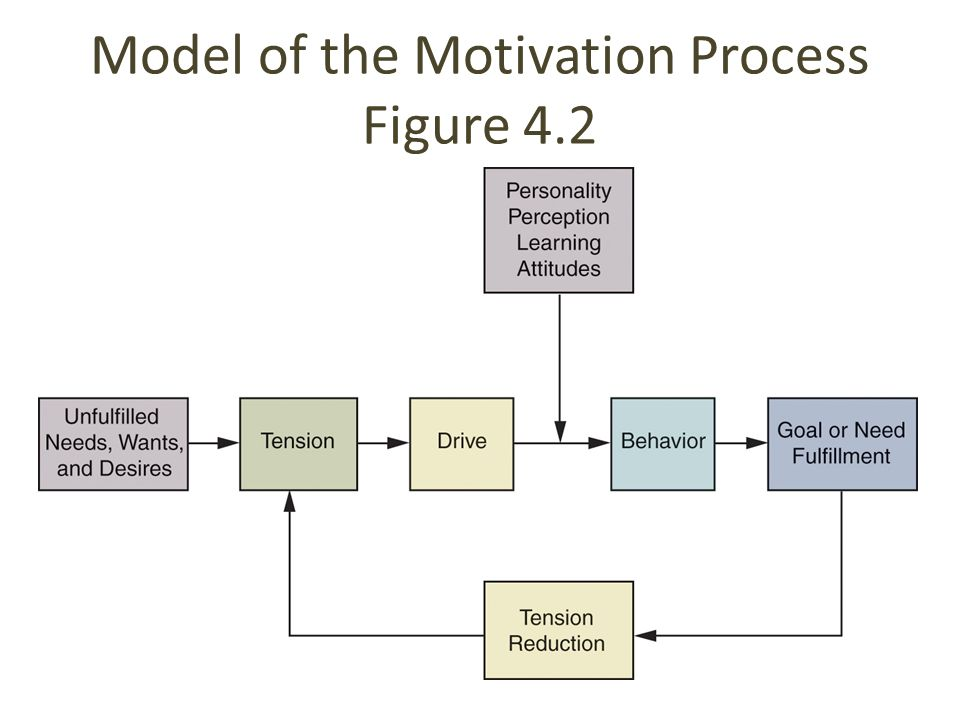 Model of the Motivation Process Figure 4.2