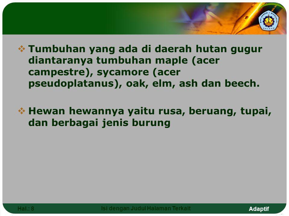 Adaptif Hal.: 8 Isi dengan Judul Halaman Terkait  Tumbuhan yang ada di daerah hutan gugur diantaranya tumbuhan maple (acer campestre), sycamore (acer