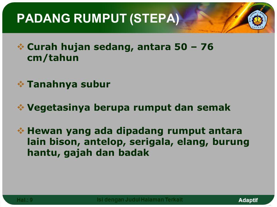 Adaptif Hal.: 9 Isi dengan Judul Halaman Terkait PADANG RUMPUT (STEPA)  Curah hujan sedang, antara 50 – 76 cm/tahun  Tanahnya subur  Vegetasinya be