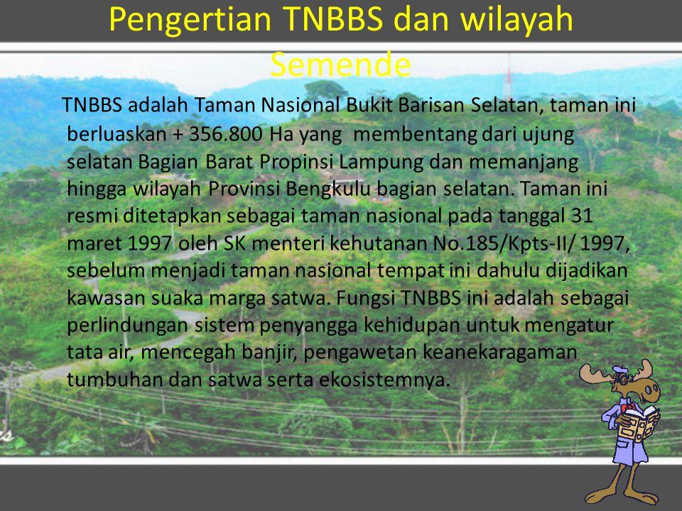 Pengertian TNBBS dan wilayah Semende TNBBS adalah Taman Nasional Bukit Barisan Selatan, taman ini berluaskan + 356.800 Ha yang membentang dari ujung s