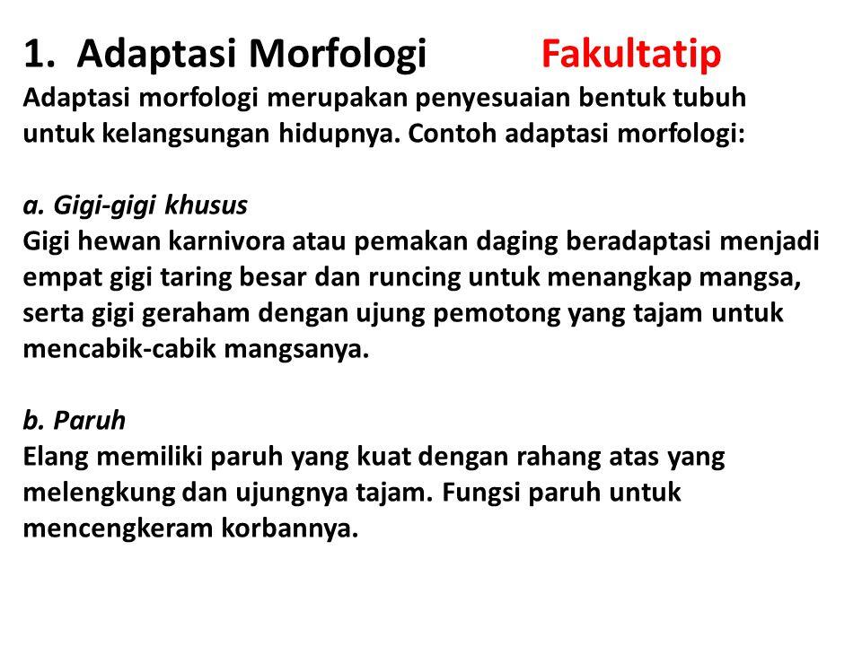 1. Adaptasi Morfologi Fakultatip Adaptasi morfologi merupakan penyesuaian bentuk tubuh untuk kelangsungan hidupnya. Contoh adaptasi morfologi: a. Gigi