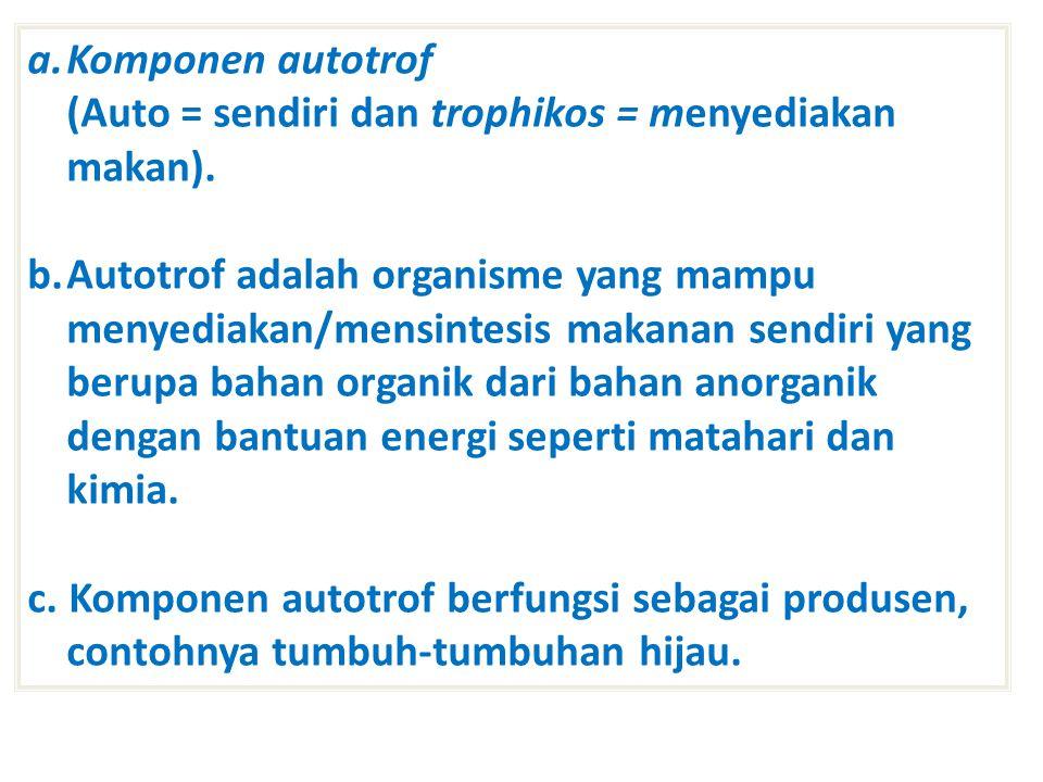 a.Komponen autotrof (Auto = sendiri dan trophikos = menyediakan makan).