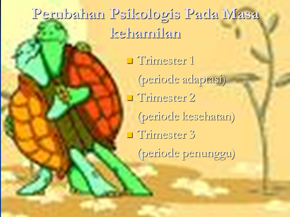 Perubahan Psikologis Pada Masa kehamilan Trimester 1 Trimester 1 (periode adaptasi) Trimester 2 Trimester 2 (periode kesehatan) Trimester 3 Trimester 3 (periode penunggu)