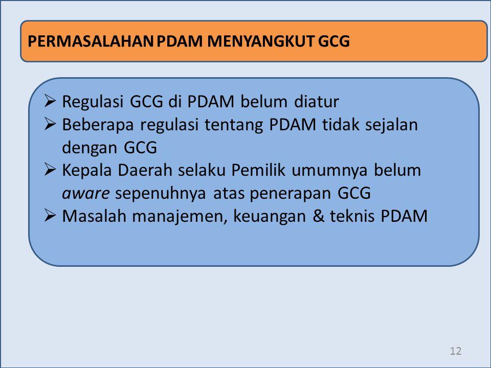 12 PERMASALAHAN PDAM MENYANGKUT GCG  Regulasi GCG di PDAM belum diatur  Beberapa regulasi tentang PDAM tidak sejalan dengan GCG  Kepala Daerah sela