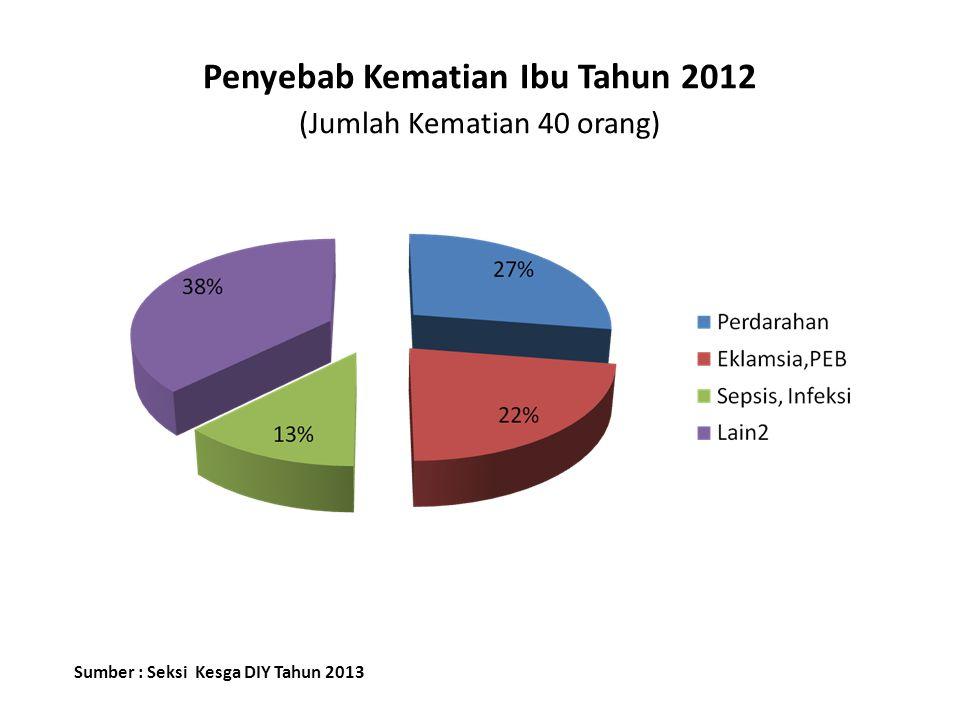 Penyebab Kematian Ibu Tahun 2012 (Jumlah Kematian 40 orang) Sumber : Seksi Kesga DIY Tahun 2013
