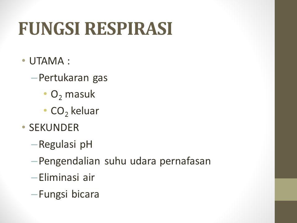 FUNGSI RESPIRASI UTAMA : – Pertukaran gas O 2 masuk CO 2 keluar SEKUNDER – Regulasi pH – Pengendalian suhu udara pernafasan – Eliminasi air – Fungsi bicara