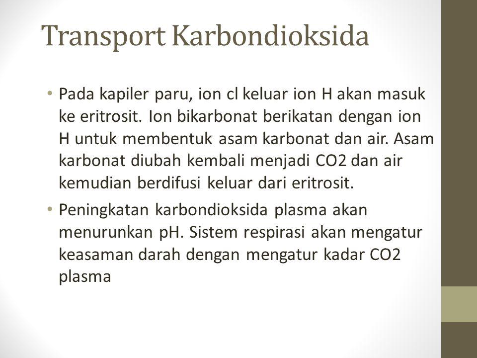 Transport Karbondioksida Pada kapiler paru, ion cl keluar ion H akan masuk ke eritrosit.