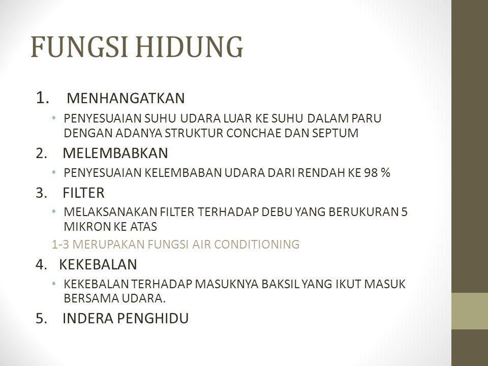 FUNGSI HIDUNG 1.
