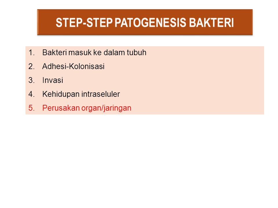 1.Bakteri masuk ke dalam tubuh 2.Adhesi-Kolonisasi 3.Invasi 4.Kehidupan intraseluler 5.Perusakan organ/jaringan