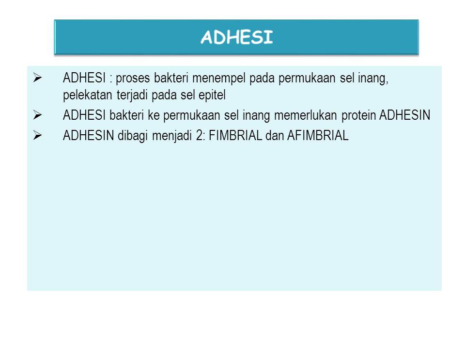  ADHESI : proses bakteri menempel pada permukaan sel inang, pelekatan terjadi pada sel epitel  ADHESI bakteri ke permukaan sel inang memerlukan protein ADHESIN  ADHESIN dibagi menjadi 2: FIMBRIAL dan AFIMBRIAL