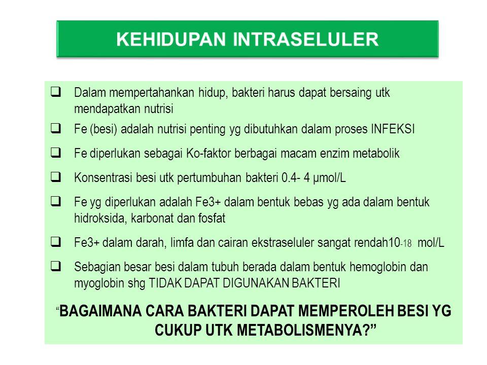  Dalam mempertahankan hidup, bakteri harus dapat bersaing utk mendapatkan nutrisi  Fe (besi) adalah nutrisi penting yg dibutuhkan dalam proses INFEKSI  Fe diperlukan sebagai Ko-faktor berbagai macam enzim metabolik  Konsentrasi besi utk pertumbuhan bakteri 0.4- 4 μmol/L  Fe yg diperlukan adalah Fe3+ dalam bentuk bebas yg ada dalam bentuk hidroksida, karbonat dan fosfat  Fe3+ dalam darah, limfa dan cairan ekstraseluler sangat rendah10 -18 mol/L  Sebagian besar besi dalam tubuh berada dalam bentuk hemoglobin dan myoglobin shg TIDAK DAPAT DIGUNAKAN BAKTERI BAGAIMANA CARA BAKTERI DAPAT MEMPEROLEH BESI YG CUKUP UTK METABOLISMENYA?